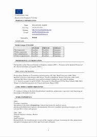 Microsoft Word Resume Template Download Awesome Example Basic Resume