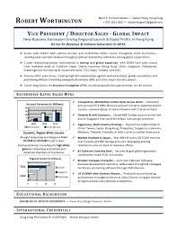 executive resume writers chicago examples sample cover letter for a writer  best ideas on
