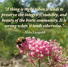 understanding the land ethic the aldo leopold foundation  a thing is right when it tends to preserve the integrity stability and