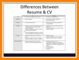 curriculum vitae layout template c v example for students undergraduate student cv template