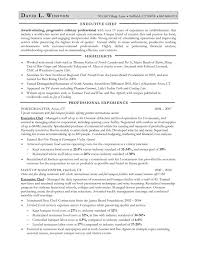 Chef Resume Objective Examples Samples Resume Templates And Cover