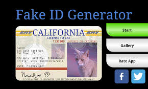 Identification For Person Generator Id Fake