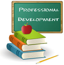 Image result for professional development