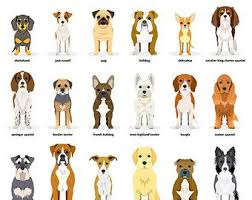 dog pictures to print. Contemporary Pictures Dog Breeds Dogs British Print Art Wall Art Animal  And Owner Gifts Prints Lover Artwork On Pictures To Print A