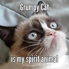 Grumpy Cat is my spirit animal - Meme Something | Grumpy cat ... via Relatably.com