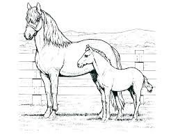 Free Coloring Pages Horses Horse Printable Horseshoe Breyer Colo