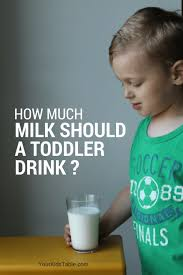 20 Months Baby Food Chart How Much Milk Should A Toddler Drink Your Kids Table
