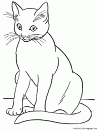 Small Picture Coloring Pages Cat Coloring Page Warrior Cat Coloring Home