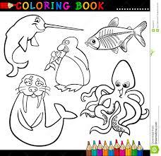 Animales Para El Libro O La Paginaci N De Colorante Ilustraci N Del