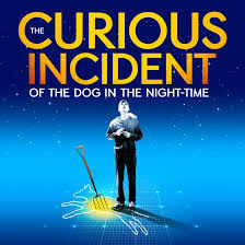 curious incident of the dog in the nighttime essay the curious incident of the dog in the nighttime essay
