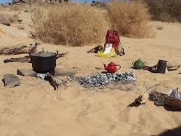 Viaggi Tuareg - il Fenech un animale di deserto