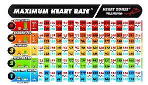 Cardio Training Zone Chart Heart Rate Training Ideafit