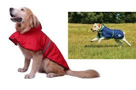 the 10 best waterproof dog coats and comfy puppy jackets in uk 2019 rangersdog com