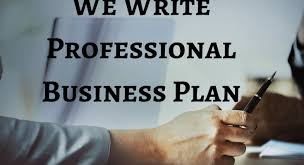 Image result for Professional business plan