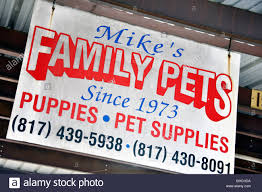Puppies For Sale Sign Stock Photos Puppies For Sale Sign