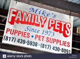 Puppies For Sale Sign Puppies For Sale Sign Stock Photos Puppies For Sale Sign