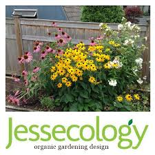 Small Picture Jessecology Organic Garden Design