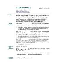 Sample Profile Statement For Resume Profile Example For Resume Nanny Resume Profile Examples Resume 47