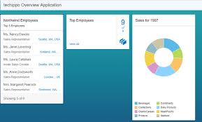 Sapui5 Pie Chart Example Fiori Overview Page Ovp Application Creating Analytical