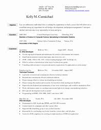 Fashion Merchandising Resume Templates Unique Merchandiser Resume