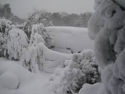 Cape Cod Weather Report  Winter Few Days Of Spring Then More Weather Cape Cod