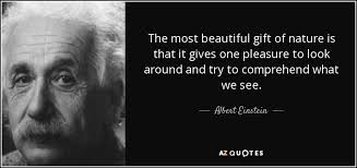Beautiful Gift Quotes Best of Albert Einstein Quote The Most Beautiful Gift Of Nature Is That It
