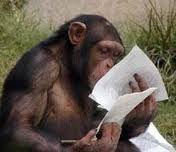 Monkey Reading a Resume