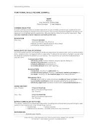 Professional Profile In Resumes 60 New Examples Of Professional Achievements For Resume Resumeresume