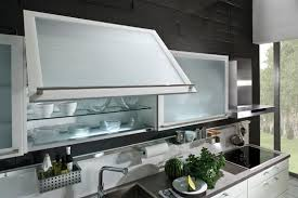 Image Kitchen Cabinet Frosted Glass Kitchen Cabinet Doors Home Design Tips And Frosted Cabinet Door Glass 15 Lowmaintenance Plants Perfect For Indoor Décor Frosted Glass Kitchen Cabinet Doors Home Design Tips And Cabinet