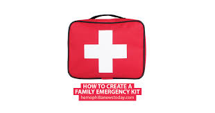 Create Birth Plan Online How To Create A Family Emergency Kit Hemophilia News Today