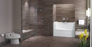Ada Bathroom Design Ideas Cool Decorating Design