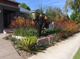australian native garden bed ideas best idea