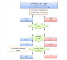 Ivf Chart Flow Chart Of Ivf Icsi Split Cycles Recruitment And Outcome
