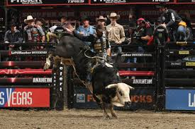 pro bull riding.  Pro Professional Bull Riders 2013 And Pro Riding G