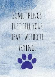 Pet Quotes Fascinating Some Things Dog Quote Saying Wwwfordogtrainers Dog