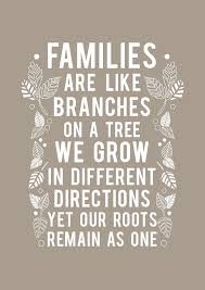 Family Quote Adorable Family Reunion Family Forever Pinterest Family Reunion Photos