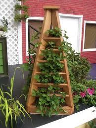 strawberry pyramid planter exles