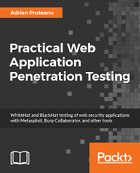 Application penetration testing software