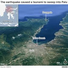 A warning may begin with an alert by a geological society that an earthquake large enough to disturb the ocean's surface. Indonesia Earthquake And Tsunami How Warning System Failed The Victims Bbc News