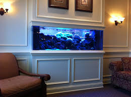 office aquariums. Adorable Stylish White Big Fish Tanks For Sale And Brown Wall Paint Plus Single Chair Cushion Office Aquariums E