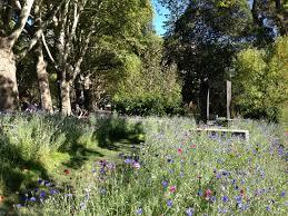 Small Picture Melbourne Garden Show 2015 Janna Schreier Garden Design