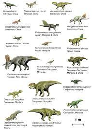 Dinosaur Sizes Comparison Chart Dinosaur Diagram Profiles Sizes Comparison Chart Google