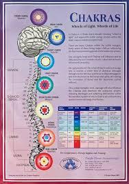 Chakras Chart A3 Poster Wall Chart Chakra Meditation
