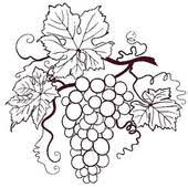 black and white grapes clipart. Delighful Grapes Grapes With Leaves Leaves For Black And White Clipart