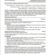 Financial Executive Resume Examples Pinterest Executive Resume