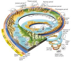 Earth Evolution Chart Timeline Of Life Evolution On Earth Motivational Stories