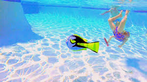 pool water wallpaper. Clearest Pool Water In The World Wallpaper