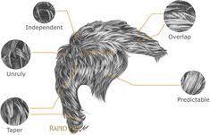 8 Fantastiche Immagini Su Disegnare I Capelli Nel 2015 Schizzi