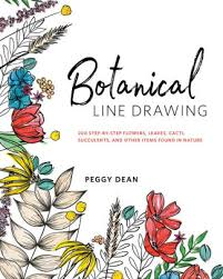 botanical line drawing 200 step by