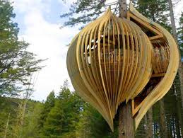 Home  Kids Tree House Kits Treehouses To Live In How To Build A Diy Treehouses For Kids